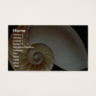 Gorgeous Nautilus shell Business Card