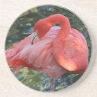 Gorgeous Pink Flamingo Coasters
