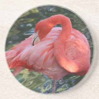 Gorgeous Pink Flamingo Coasters