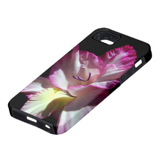 Gorgeous pink Gladiola iPhone 5 Covers