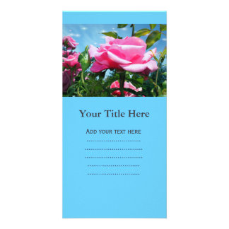 Gorgeous pink rose in blue sky. Floral photography Custom Photo Card