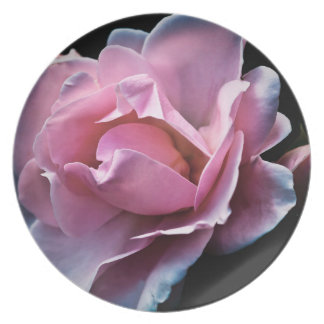 Gorgeous Pink Rose on Black Party Plates