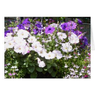 Gorgeous Purple and White Petunias Card