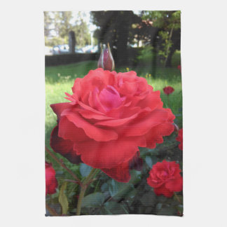 Gorgeous Red Roses Kitchen Towel