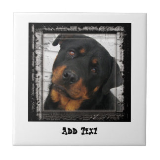 Gorgeous Rottweiler Dog face personalized Tile