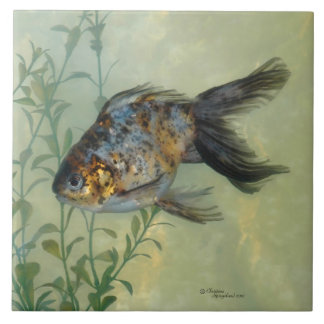 Gorgeous Ryukin Calico Goldfish Tile