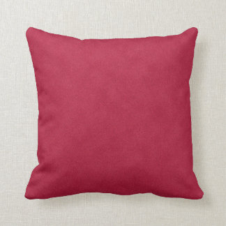Gorgeous Suede Couch or Home Pillow