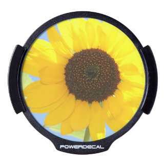 Gorgeous Sunflower LED Window Decal
