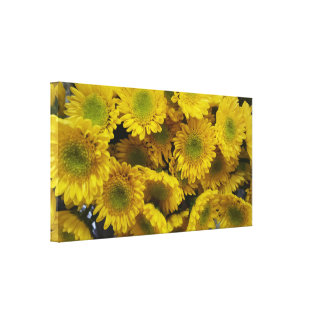 Gorgeous Sunny Yellow Flowers Close Up Canvas Print