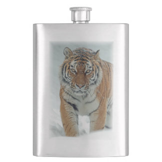 Gorgeous tiger in snow hip flask