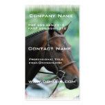 Gorgeous Warmblood Horse Business Card