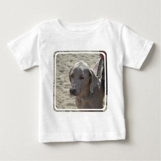 Gorgeous Weimaraner Baby T-Shirt