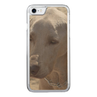 Gorgeous Weimaraner Carved iPhone 8/7 Case