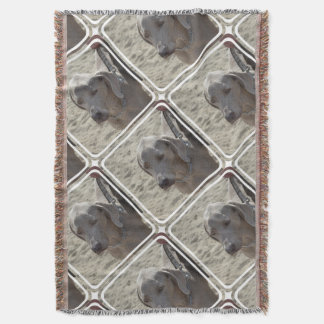 Gorgeous Weimaraner Throw Blanket