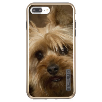 Gorgeous Yorkshire Terrier Incipio DualPro Shine iPhone 8 Plus/7 Plus Case