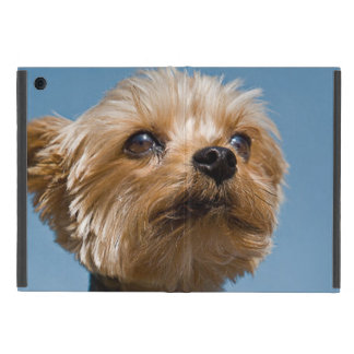 Gorgeous Yorkshire Terrier iPad Mini Case