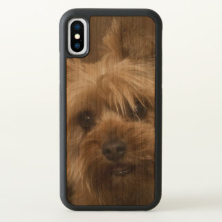 Gorgeous Yorkshire Terrier iPhone X Case