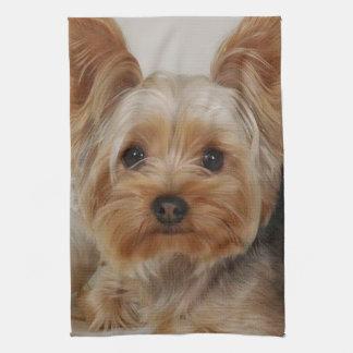 Gorgeous Yorkshire Terrier Kitchen Towel