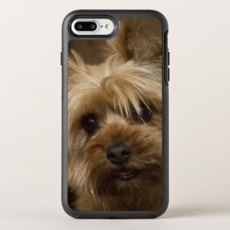 Gorgeous Yorkshire Terrier OtterBox Symmetry iPhone 8 Plus/7 Plus Case