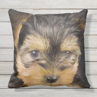 Gorgeous Yorkshire Terrier Throw Pillow