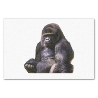 Gorilla Ape Monkey Tissue Paper