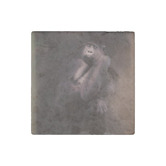 Gorilla Art Decor Stone Magnets