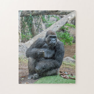 Gorilla at the zoo photo puzzle
