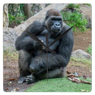 Gorilla at the zoo square wall clock