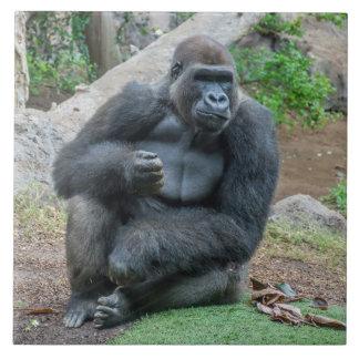 Gorilla ceramic photo tile