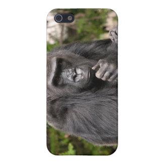 Gorilla F 8672 Case For iPhone 5/5S