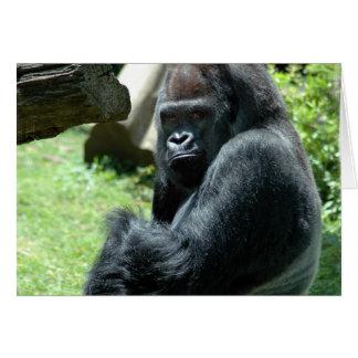 Gorilla Glare Greeting Card