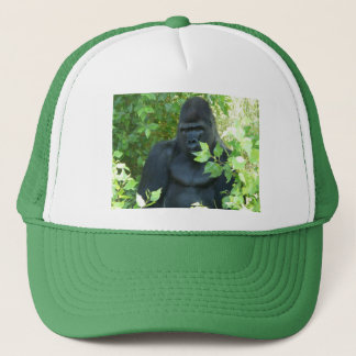gorilla in the bush trucker hat