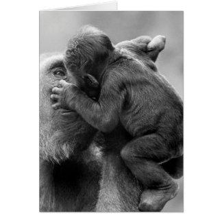 Gorilla Kiss Card