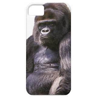 Gorilla Monkey Ape iPhone 5 Covers
