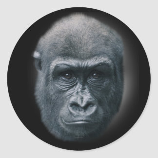 Gorilla My Dreams Classic Round Sticker
