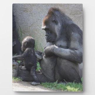 Gorilla Plaque