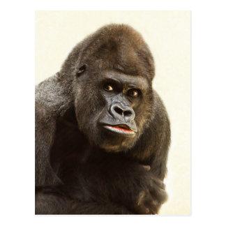 Gorilla Pout Postcard