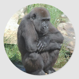 Gorilla Sitting Sticker