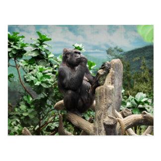 Gorilla Too Postcard