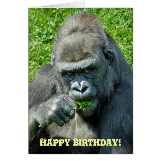 GORILLAS CARD