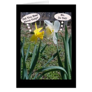 Gossiping Daffies Friendship Greeting Card