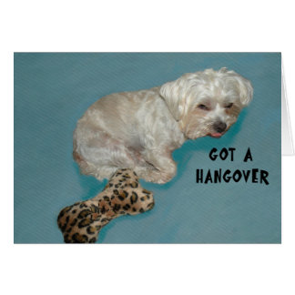 Got a Hangover Card White Dog