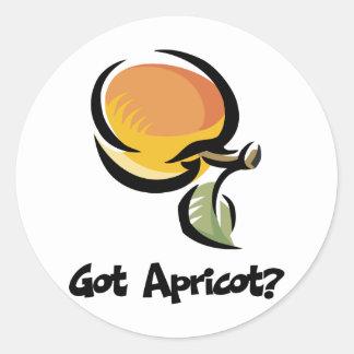 Got Apricot Classic Round Sticker