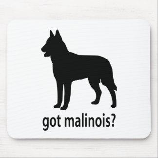 Got Belgian Malinois Mouse Pad