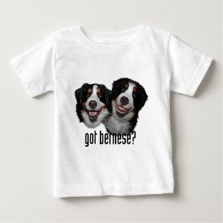 got bernese? baby T-Shirt