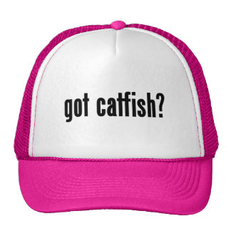 got catfish? mesh hat