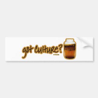 Got Culture? Kombucha Bumper Sticker