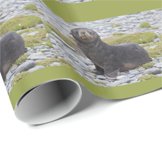 Got Fish? Wrapping Paper