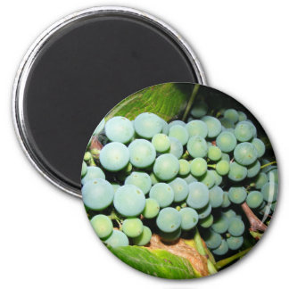 Got Grapes 2 Inch Round Magnet