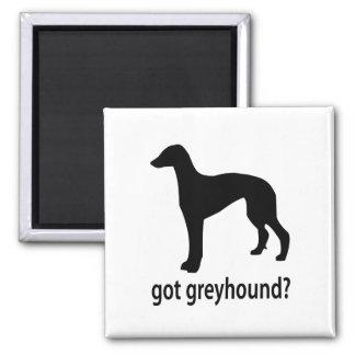 Got Greyhound Magnet